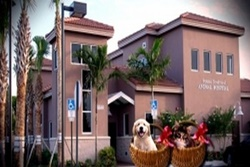 vet in palm beach